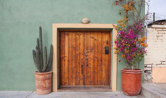 Casa rústica para fachada vintage con plantas decorativas